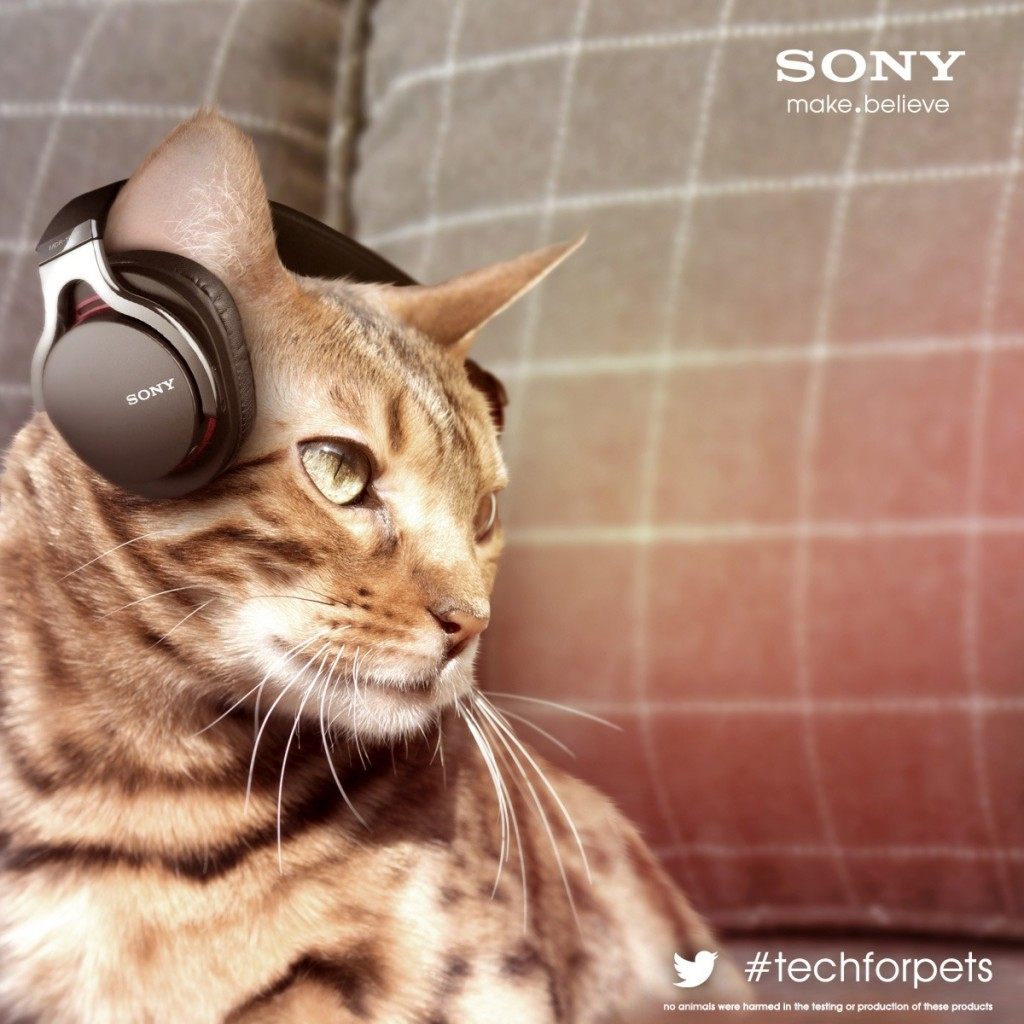 sony-cans