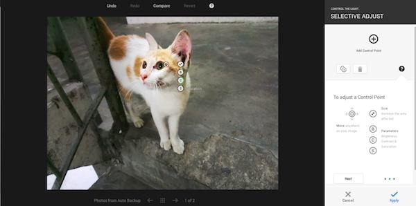 Google Photo Selective Adjust