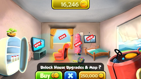 Expensive House Upgrade