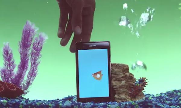 Sony Underwater Apps Goldie