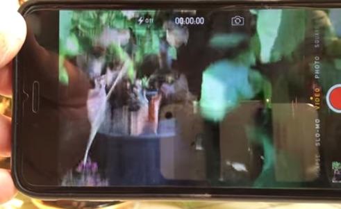 iPhone 6 Plus Camera Bug Japanese