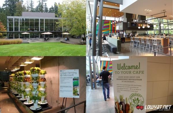 Microsoft Redmond Campus Tour Part 2 02