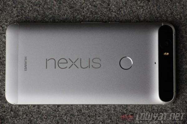 nexus-evolution-article-13