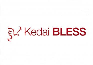 Kedai BLESS Logo
