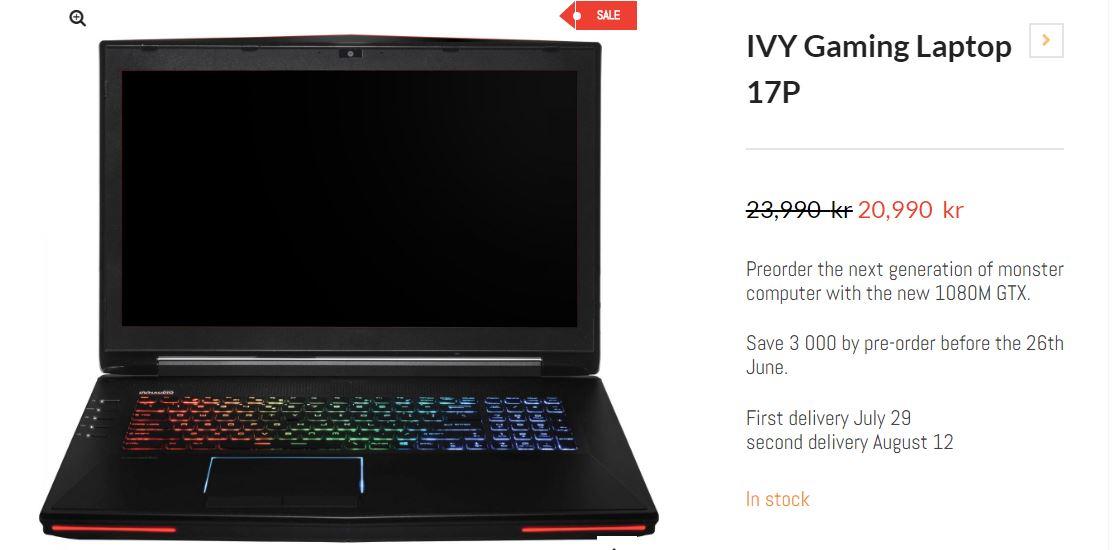 IVY Gaming laptop