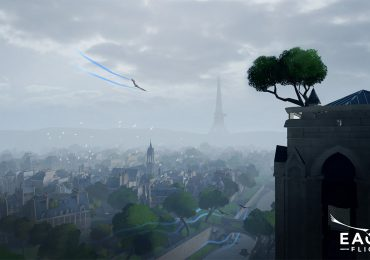 Eagle Flight Notre Dame