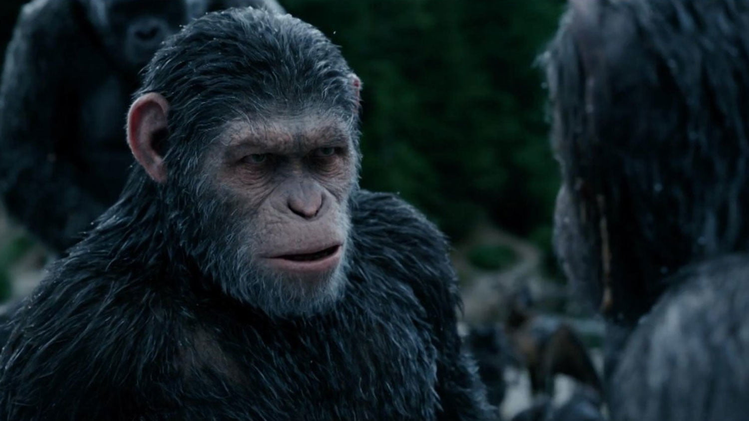 Planet of the Apes Disney
