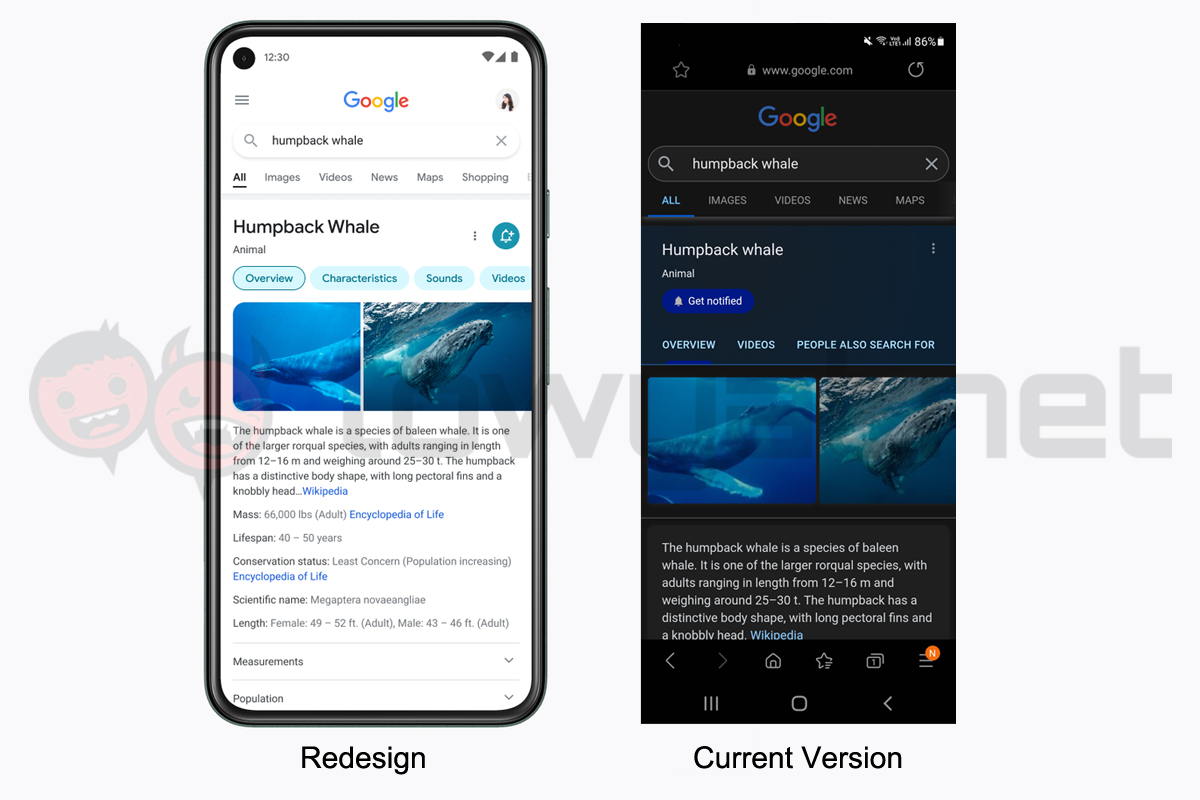 Google Search mobile redesign