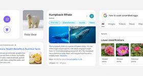 Google Search mobile redesign