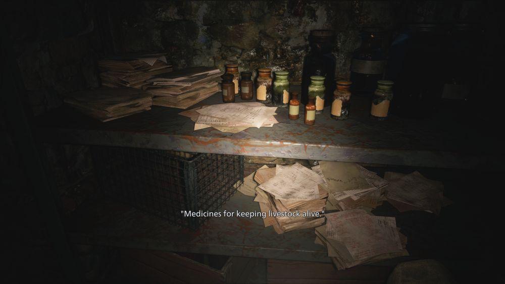 Resident Evil Village Maiden paper notes